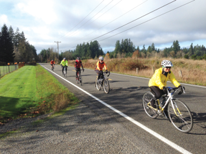 The Olympia region offers multiple opportunities for road cyclists and to those who prefer spending more time in the woods. Photo courtesy of Capital Bicycle Club