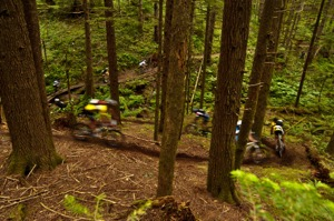 Flowing trails amidst healthy forests provide a fantastic playground for mountain bikers.  Photo by Dave Silver