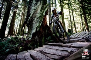 Café Express rider Scott Edmunds hugs a tree while riding one of the many sections of wooden trail. Photo by BC Bike Race
